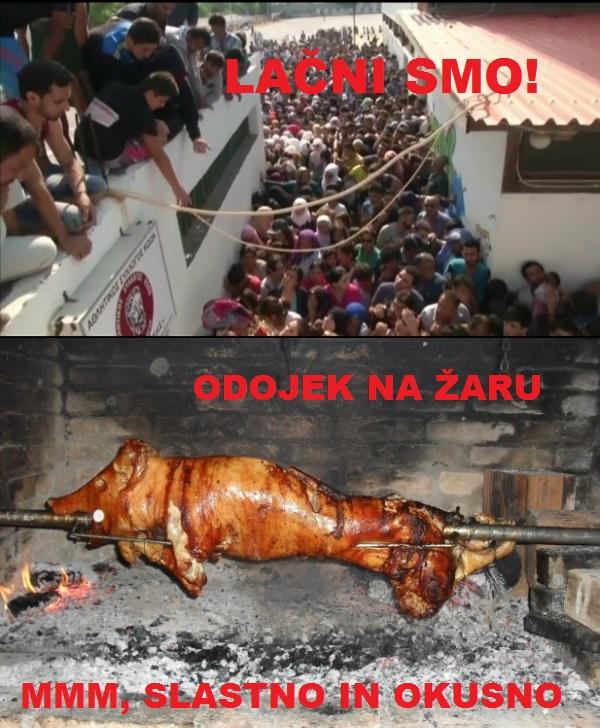 begunci_na_kosu_so_lacni_svinjski_odojek