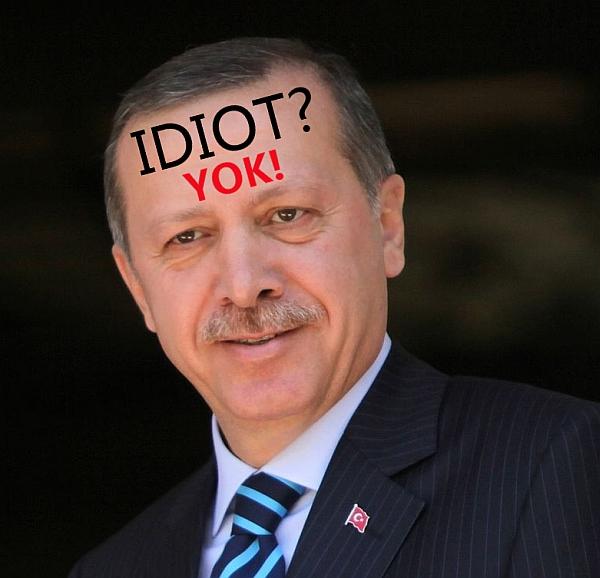 erdogan_ni_idiot_DK