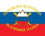 Ljubica Jelušič bi morala premisliti o odpustitvi sovražnega kadra iz Slovenske vojske