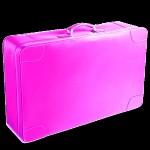 Slovenec v živo rožnatem kovčku tihotapil 9 kg kokaina