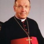 Novomeška škofija: Župnik Romu