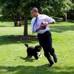 Ameriški zvezni sodnik Rihard Franc Čebulj je razpošiljal rasistični vic o Baracku Obami