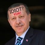 Rusija in Sirija morata nevtralizirati sovražno turško delovanje na severu Sirije